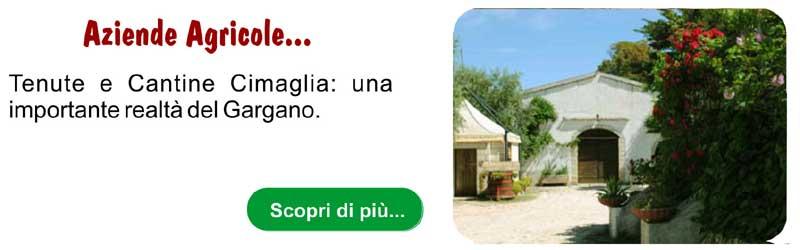 Aziende Agricole Cimaglia